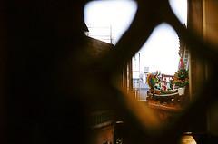 D1050025_lr (chi.ilpleut) Tags: kinmen taiwan island quemoy 2017 chinesenewyear lunar film expiredfilm kodakelitechrome100 iso100 crossprocessing 135mm 35mm analogue ilovefilms kodakfilm 底片 過期底片 柯達 記憶 蹤跡 金門鎏金之島kinmen 台灣 海島 島嶼 外島 回憶 走春 大晴天拍照天 晃晃 隨拍