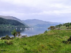Loch Sunart 2/3