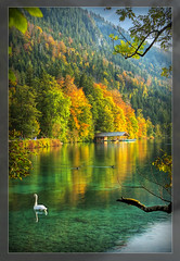 Alpsee (Edd Noble) Tags: autumn lake alps germany swan nikon 1755mmf28g nikkor boathouse d2h alpsee naturesfinest anawesomeshot diamondclassphotographer flickrdiamond closetoreality