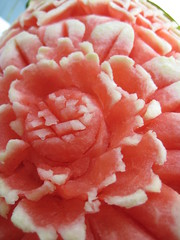 IMG_0129 (floggymcduff) Tags: flower watermellon