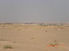 enbak   (wosom) Tags: bahrain picnic desert sands camels bedouins nomads qatar ksa       wosom