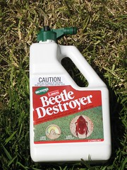 Beetle Destroyer