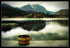 June Lake (mac_raw) Tags: california color texture bravo searchthebest adventure bff junelake luvya eow xoxoxoxo magicdonkey tamron18200mm magiccookie d80 mywinners henyo superaplus aplusphoto supercookie superbmasterpiece infinestyle megashot macraw cookieangel cookieisthebest darlisalovescookie andthecutest xoxoxoxoxoxoxoxoxoxoxoxoxox thegardenofzen thegoldendreams  dstreallysucks yaycookieinthemountains impeccableswimmingbathlol missyoutoogirlfriend cookietheinnocent givescookieabighug youareagoldstar xoxoxoxoxoxoxoxo haveawonderfuldaymydearfriend