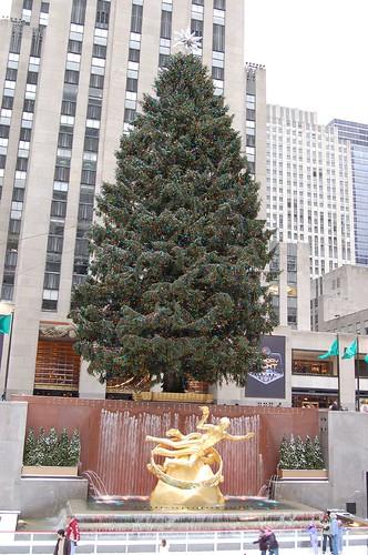 Rockefeller Christmas Tree, 2007