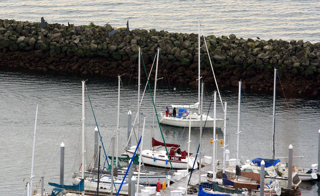MYSTERY!:  What Happened to the Shilshole Bay Marina Jetty's Sea Serpent????