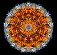 Plant Fibres-Kaleidoscope (pudaniel) Tags: pretty kaleidoscope