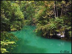 Please open to more 0708 LD 80304 (thethi (pls, read my 1st comment, tks a lot)) Tags: river vert rivière voyage nature paysage loue doubs 25 jura france été bestof2007 ruby10 août setwater faves21 setaout