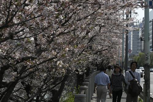 飯田橋~市ヶ谷界隈