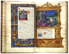 Rosenwalds ms 10-017r