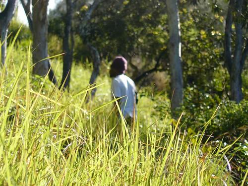 Coup de chasse Bopope Mai 2008 #25 : herbert