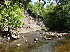 Grosmont. (Noddy Guevara) Tags: trees stream yorkshire grosmont