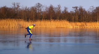 Speedskating next to the golden reed of Ankeveen