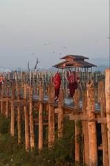 30099817 (wolfgangkaehler) Tags: 2017 asia asian southeastasia myanmar burma burmese mandalay ubeinbridge lake earlymorning earlymornings earlymorninglight wooden woodenarchitecture woodenbridge taungthamanlake amarapura teak teakwood people person walking buddhistmonks
