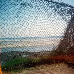 Voightlander  Brilliant Test 1st Roll Fence (pineconemonk) Tags: camera copyright 120 film digital 1932 kodak maine millennium 400 asa voightlander portra brilliant act c41 dmca voitlander