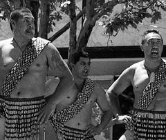 Anglų lietuvių žodynas. Žodis war-dance reiškia n karo šokis lietuviškai.