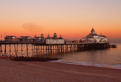 Eastbourne pier & starlings (fast eddie 42) Tags: sunset coast pier seaside topv333 eastbourne starlings eastbournepier blueribbonwinner amazingtalent fasteddie42 diamondclassphotographer slrspickoftheweek scenicsnotlandscapes stunningphotogpin photodaygpin piereastbourne eastbournepierstarlings eastbournepiersunset