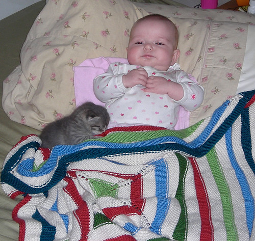 blanket and kitty