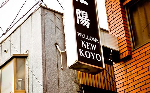 new-koyo-12.jpg