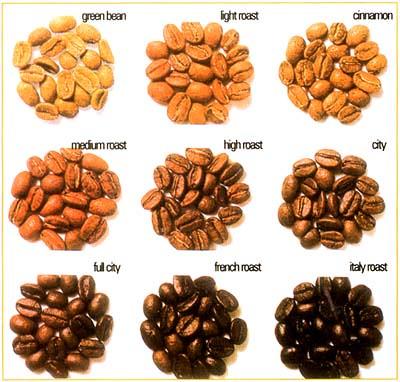 Colores del grano del café por grados del tostado