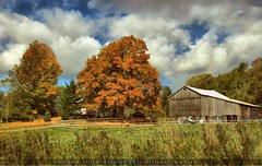 Pennsylvanian Autumn (:: Igor Borisenko Photography ::) Tags: blue autumn trees fab sky orange white fall colors leaves clouds barn fence amazing nikon raw pennsylvania quality nikond50 best soe hdr allrightsreserved foiliage subtle realistic highquality flickrsbest tthdr mywinners anawesomeshot superbmasterpiece igorb81 dynamicphotohdr dphdr igorborisenkophotography
