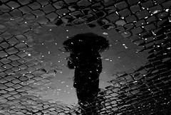 affittasi crepuscoli (marco zeppetella) Tags: bw black reflection water umbrella lluvia bravo noir marco acqua pioggia nero ombrello lucido riflessioni instantfave abigfave betterthangood zeppetella