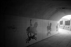 003 (Blacknoise) Tags: 2 urban bw white black film home 35mm dark graffiti diy decay leeds tunnel delta olympus xa2 iso 400 push analogue xa pushed process 800 processed hc ilford compact ilforddelta ilfotec