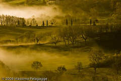 Brume in Toscana 1 (Massimo Pelagagge) Tags: morning summer italy panorama tree misty fog sunrise landscape landscapes europa europe italia alba country hill campagna tuscany campo toscana terra 2008 nebbia toscane luce paesaggio colline italians toskana tuscan themoulinrouge italianlandscape senese blueribbonwinner beautifullandscapes paesaggiotoscano anawesomeshot aplusphoto italylandscapes favemegroup3 diamondclassphotographer megashot italylandscape paesaggiotoscana massimo1959 paesaggitoscani tuscanylandscape tuscanylandscapes italyphotography massimopelagagge tuscanyphotos paesaggitoscana tuscanyphoto landscapeofitaly landscapeinitaly landscapeofthetuscany tuscanylandscapeitaly tuscanyitalypictures tuscanyphotography paesaggiotuscano