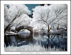 Stone Bridge @ Central Park (AdreWine) Tags: nyc newyorkcity trees usa lake ir centralpark jfk stonebridge infraredred