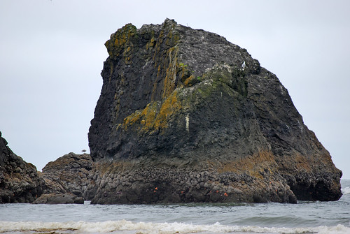 16-Copalis Rock