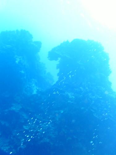 20100422047