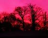 Sunrise the next day 8am ... (Sandalwood19) Tags: sunrise claughton january2009