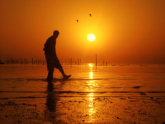 Summer Time! (AL zanki (d10b Q8)) Tags: sunset red sea summer orange sun seascape man birds silhouette yellow sunrise canon landscape hd kuwait 500 soe comments q8  supershot 100favs platinumphoto anawesomeshot diamondclassphotographer colourartaward d10b alzanki  500comments