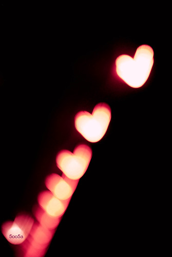 heart-shaped bokeh♥