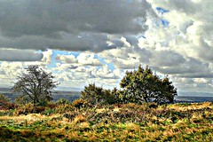 on helsby hill - cheshire - england (~ paddypix ~) Tags: autumn sky colour green nature clouds countryside picnik moodyblues ukandireland hdrish