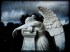 Angels Wept (Dizzee Dayzee) Tags: cemeteries cemetery graveyard angel mourning headstones graves angels monuments sorrow aloneinthedark cemeteryart mywinners cemeterystatues superbmasterpiece diamondclassphotographer flickrdiamond theperfectphotographer ninianlivtexture