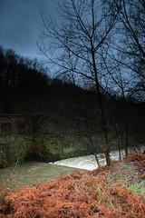 Weir (jenny - blinkclick) Tags: trees sky rain river manchester jennifer jenny gloom ferns mannion weirclouds wwwjennifermannioncouk