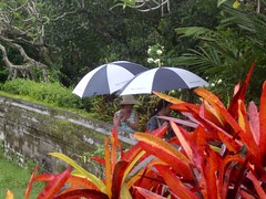 Bali, light rain (LarrynJill) Tags: 2005