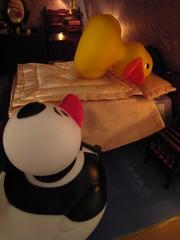 Duck Pond in Duckfinger