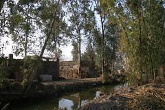 gyptisches Landleben (arndt_hoppe) Tags: egypt rurallife pyten komelachta