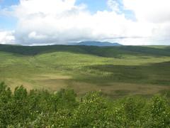 IMG_3206.JPG (JaredWO) Tags: alaska fire research boreal