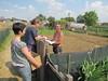 Maggio, distribuzione compost 10
