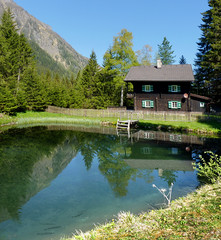 The beautiful Christlhaus and freshwater trout (B℮n) Tags: blue trees sky house fish alps green heritage nature river geotagged austria wooden wasser wildlife salmon haus bach valley brook marmot vulture trout fishes fen zon forellen rauris berghütte forsthaus 5661 nationalparkhohetauern rauristal jagdhaus colorphotoaward salmoninae kruml bucheben fleursetpaysages altebuchebenstrasse36 altebuchebenstrase36 hegerhaus geo:lon=12977740 geo:lat=47127295 christlhaus krumltalbach