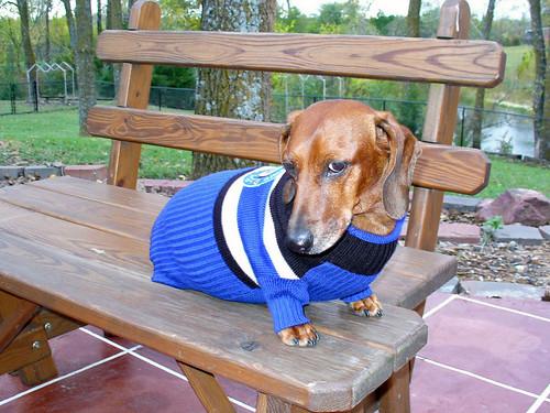 2007-10-18 - Ralphie the Police Dog - 0024