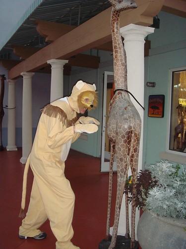 Pete stalks a giraffe