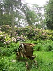 "Old ""secret garden"" (Alir147) Tags: abandoned hospital ruin croft urbanexploration derelict healthcare urbex scottishhistory scotlandsforgottenplaces"