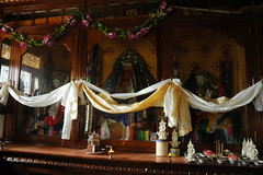Shrines with diety statues, white Tara, offerings, white silken khatas tied together, decorations, wood, glass, flowers, tormas, monastery, upper Pharping, Nepal (Wonderlane) Tags: wood flowers nepal decorations glass rural religious community buddhist religion buddhism monastery meditation spiritual pilgrimage offerings pharping wonderlane 4379 tormas upperpharping shrineswithdietystatues whitesilkenkhatastiedtogether
