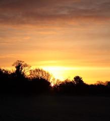 Sunrise (torimages) Tags: england unitedkingdom somerset allrightsreserved donotusewithoutwrittenconsent copyrighttorimages