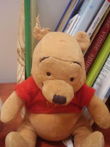 Winnie the half eared bear