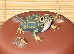 frogs-top4m (sherab_chen) Tags: teapots  zisha teawares