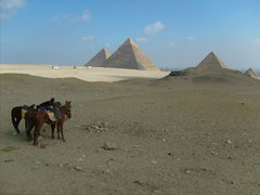 Egypt, Day 1, Giza (26)